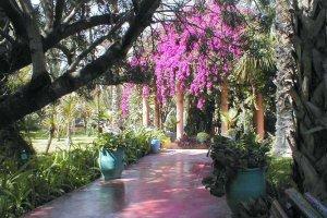 حدائق الماجوريل في مراكش