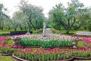 حديقة كولومينسكوي في موسكو