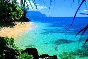 الطبيعة الساحرة في هاواي