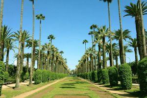 حديقة الجامعة العربية في الدار البيضاء