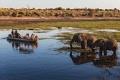 السفاري البرية في بوتسوانا