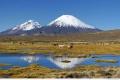 """حديقة """"لوكا"""" الوطنية في تشيلي"""