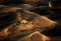 صحراء ليوا