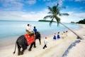 جزيرة كو ساموي
