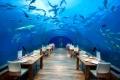 مطعم ايثا في جزر المالديف